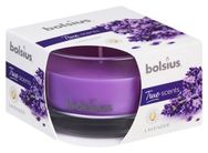 Bolsius Geurkaars True Scents Lavendel 80/50 mm