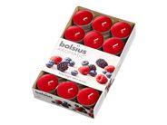 Bolsius geurlichten Aromatic Berry Delight - 30 stuks
