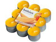 Bolsius Geurlichten Aromatic Exotic Mango 18 Stuks