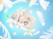 Maison Berger Geurkaars Delicate White Musk