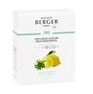 Maison Berger Autoparfum Navulling Zest of Verbena - 2 Stuks
