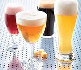 Durobor Bierglazen Set Beer Expertise - 4 Stuks