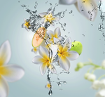 Maison Berger Autoparfumset Aroma Aquatic Freshness