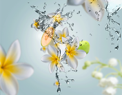 Lampe Berger Giftset Aroma Aquatic Freshness