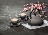 Le Creuset Fluitketel Zen Kersenrood 1.5 Liter