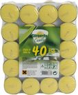 Citronella Theelichten 40 Stuks