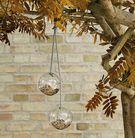 Eva Solo glazen bird feeders - 2 stuks