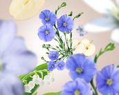 Lampe Berger navulling Linen Blossom - 500 ml