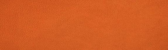 linddna_leer_hippo_oranje_print.jpg