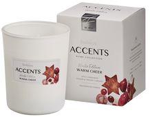 Bolsius geurkaars in glas Accents Warm Cheer 100/80 mm