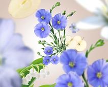 Maison Berger geurstokjes Linen Blossom sfeer