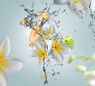 Maison Berger geurstokjes Aquatic Freshness sfeer