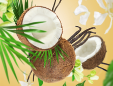 Lampe Berger navulling Coconut Monoï 500 ml sfeer