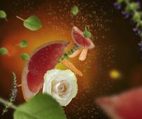 Maison Berger geurstokjes Exquisite Sparkle sfeer
