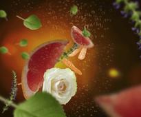 Maison Berger geurkaars Exquisite Sparkle sfeer