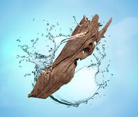 Maison Berger navulling Aquatic Wood 200 ml sfeer