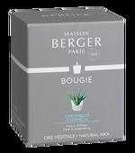 Maison Berger geurkaars Citronella