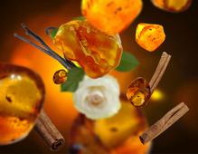 maison-berger-amber-powder-sfeer
