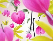 maison-berger-aroma-love-voracious-flower