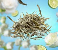 Lampe Berger navulling Pure White Tea 500 ml sfeer