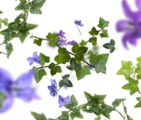 Maison Berger geurstokjes Lolita Lempicka Premium paars sfeer