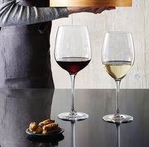 Bormioli Wijnglazen