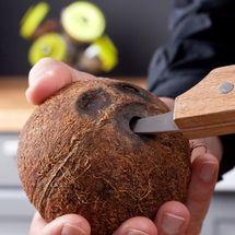 tomorrows_kitchen_kokosnoot_opener1.jpg