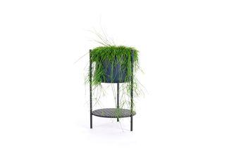 XLBoom bloempot-plantenbak Ent small 56 cm