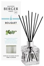 Maison Berger geurstokjes Fresh Eucalyptus