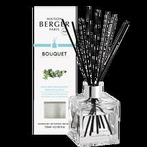 maison-berger-geurstokjes-fresh-eucalyptus