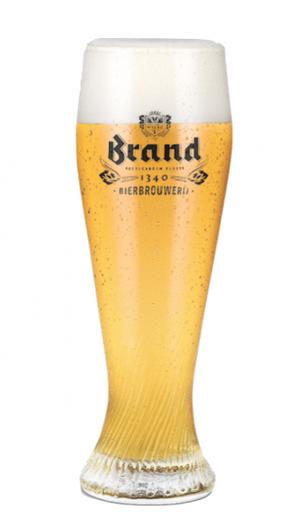 Brand Bierglazen 30 cl