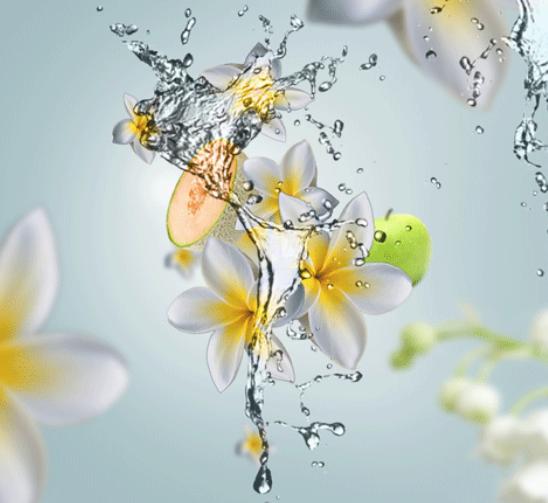 Maison Berger auto diffuser Aroma Aquatic Freshness sfeer