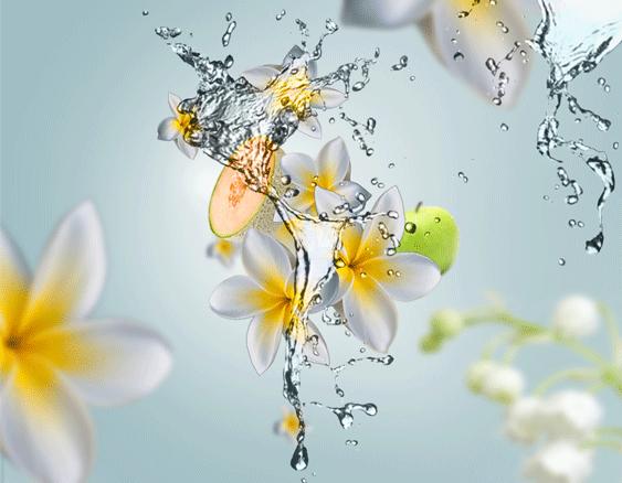 maison-berger-aroma-aquatic-freshness-sfeer