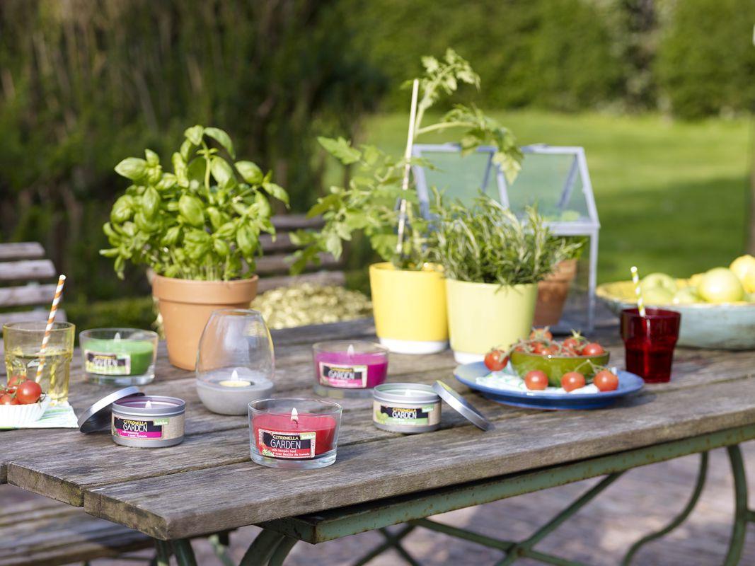Bolsius geurkaars in glas Citronella & Rozemarijn 62/106 mm sfeer